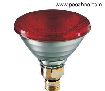 r95e飞利浦红外线灯泡