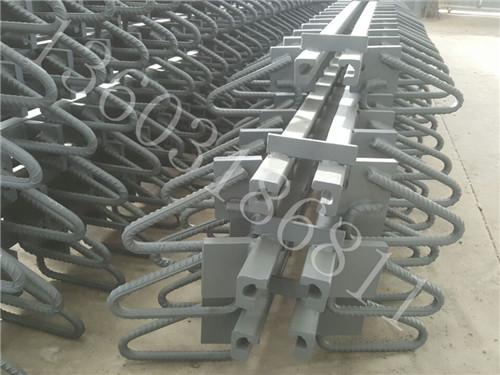 异型钢单缝式伸缩装置