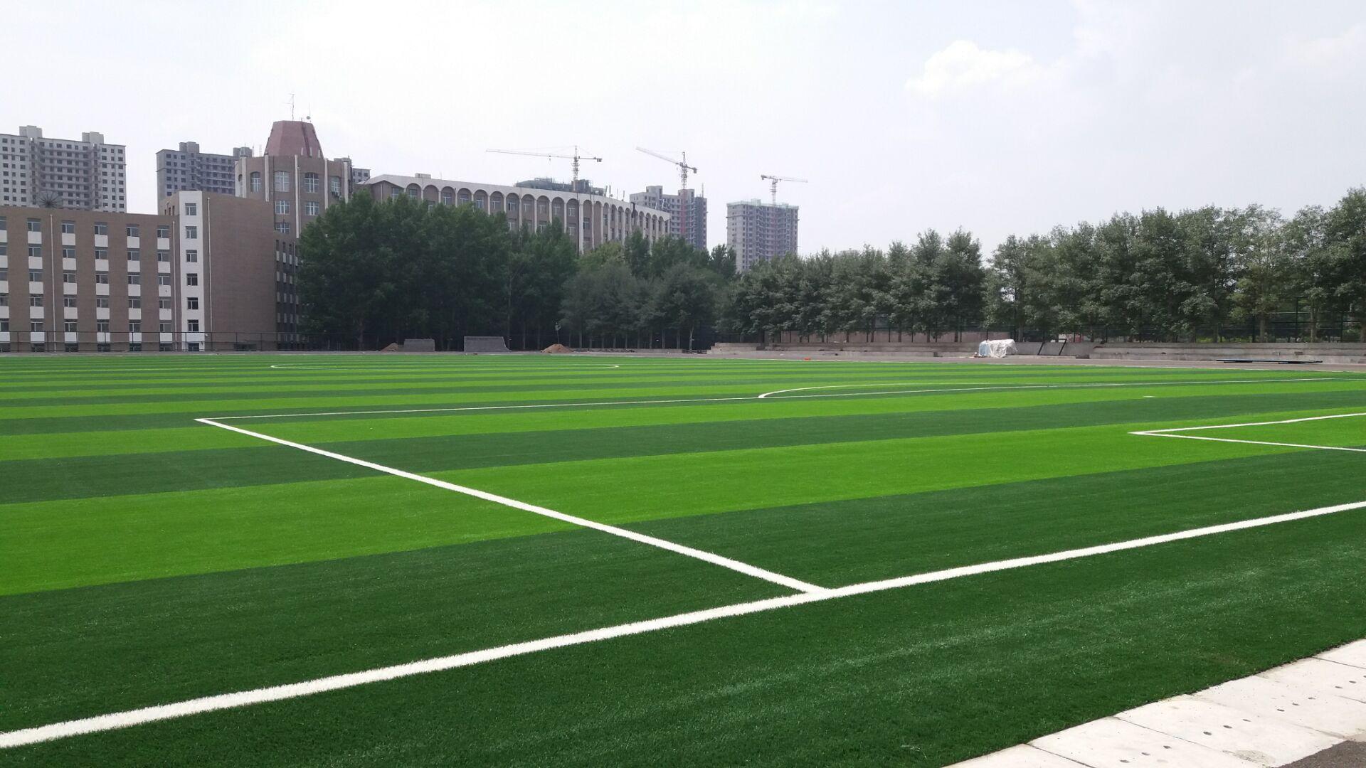 上海幼儿园塑胶地坪最新环保材料施工